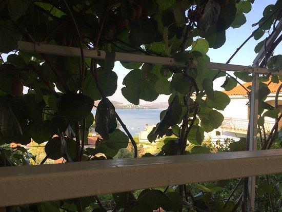 Ciovo Island Resmi