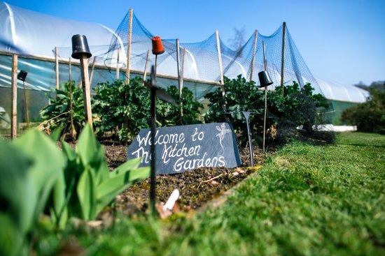 Askham, UK: Kitchen gardens