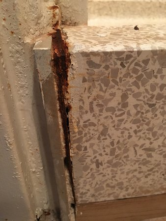 Empire Hotel: shower stall- rust and mold.