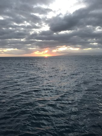 Star of Honolulu - Dinner and Whale Watch Cruises: Sunset