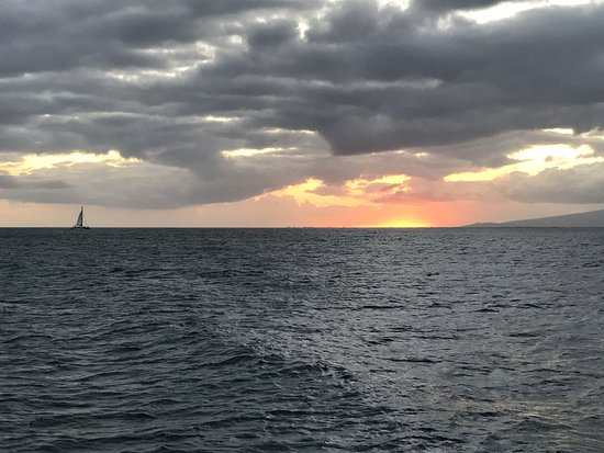 Star of Honolulu - Dinner and Whale Watch Cruises: Sunset with sailboat