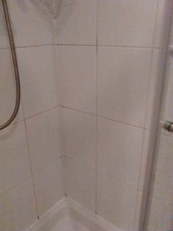 The Metro: Dirty shower