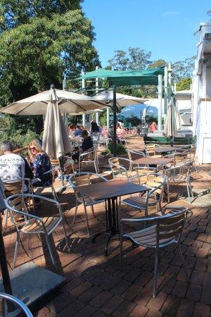 Tamborine Mountain, Australia: Terrace