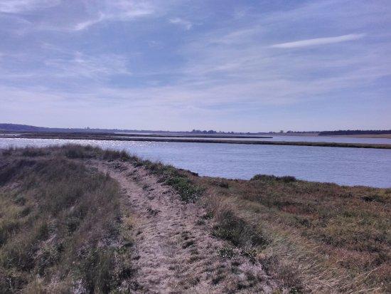 Blythburgh, UK: Estuary walk from Southwold