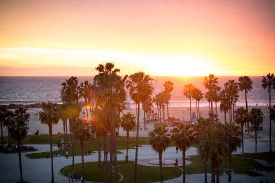 High Rooftop Lounge Los Angeles Venice Restaurant Reviews Phone Number Photos Tripadvisor