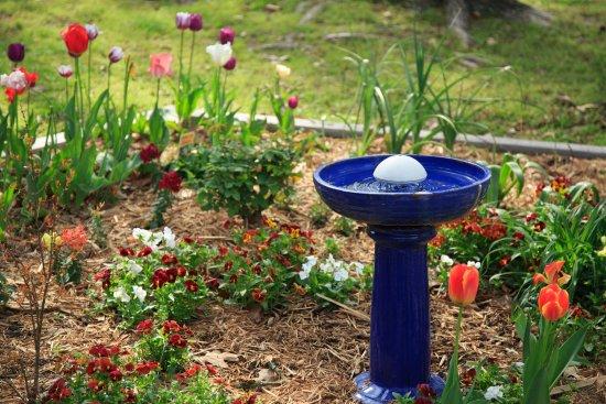 Μπίσμαρκ, Αρκάνσας: gardens