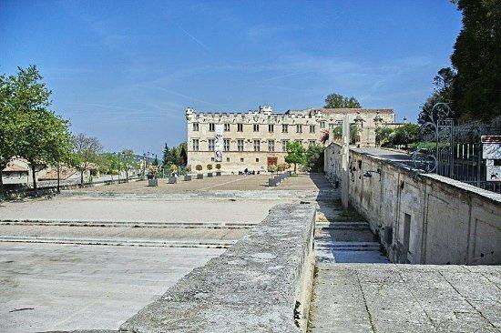 Musee du Petit Palais: Vista del Musée du Petit Palais