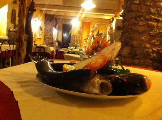 Il Gobbo: Il nostro pesce fresco