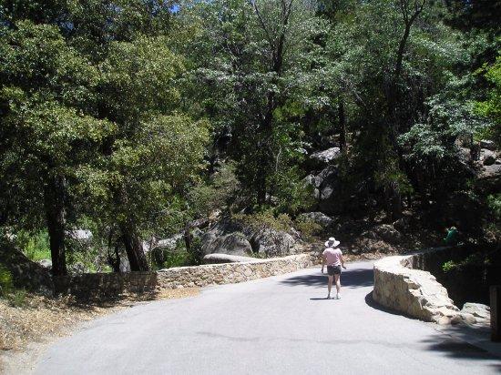 Idyllwild, CA: Driveway into pari