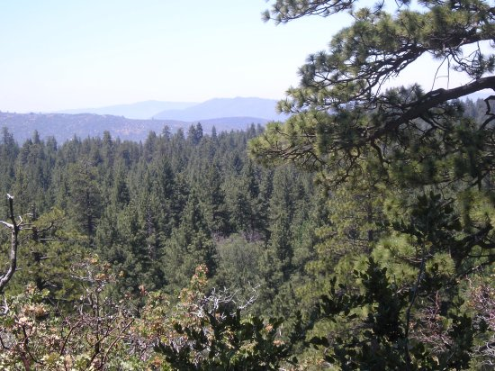 Idyllwild, CA: Nice places to hike