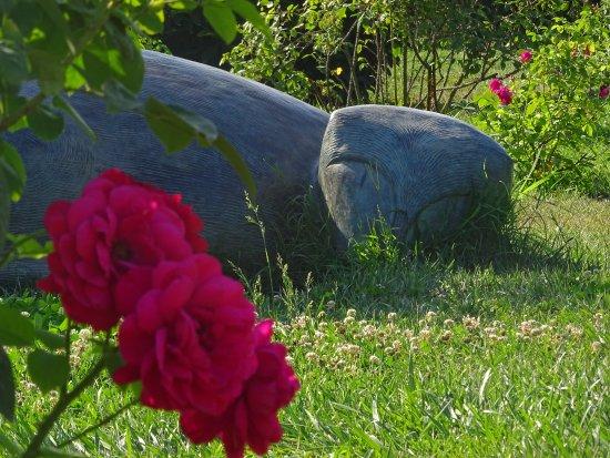 Giardino delle rose photo de folon e il giardino delle rose florence tripadvisor - Il giardino delle rose ...