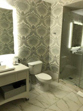 Silversmith Hotel Chicago Downtown: Nice sized bathroom