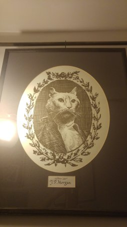 The Cat Cabinet : retrato de Morgan, el gato del dueño de casa