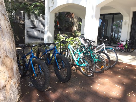 Palm Cove, Australie : Biked