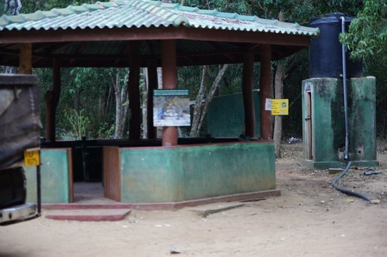 Wilpattu National Park : The rest area and drop squat toilet in the background