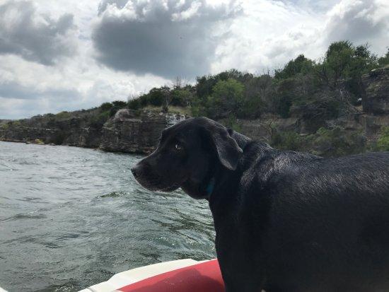 Graford, TX: Tucker taking in the boat ride