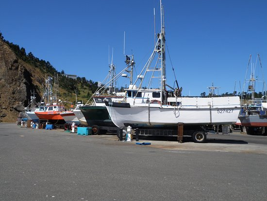 Griff's On The Dock: The of the working docks around the restaurant