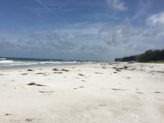 Bradenton, FL: photo0.jpg