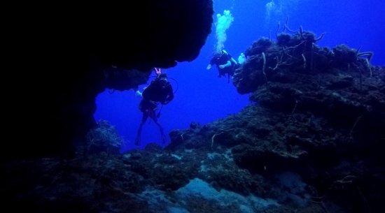 Always Diving & Water Sports: photo2.jpg
