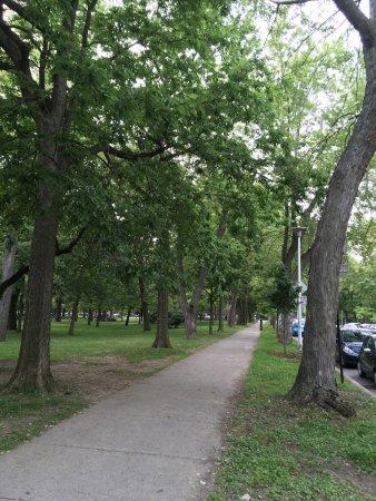 Gite du Parc Lafontaine Guest House: photo4.jpg