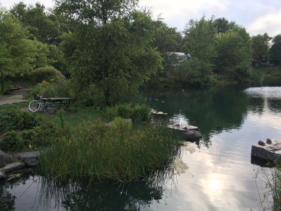 Gite du Parc Lafontaine Guest House: photo5.jpg