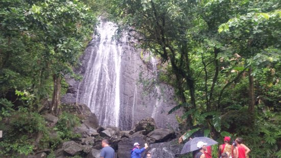 La Coca Falls: COCA FALLS