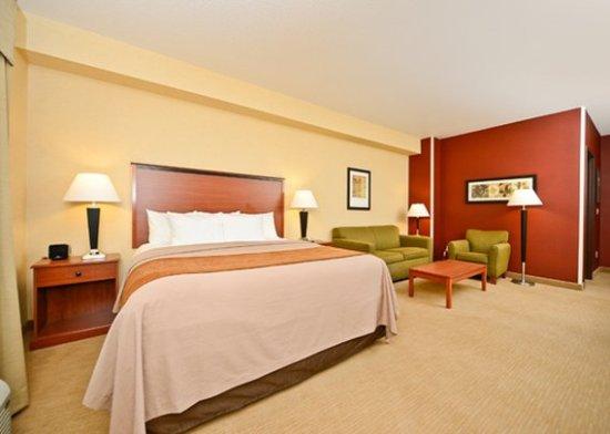 Shelby, MT: Room with sofa sleeper