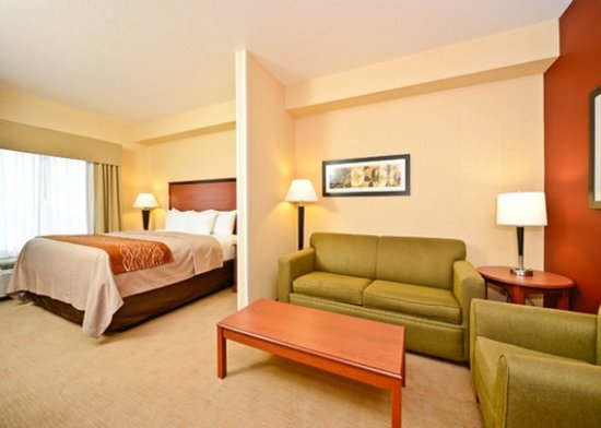 Shelby, MT: One Room suite