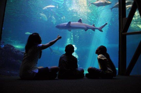 Maui Ocean Center Admission