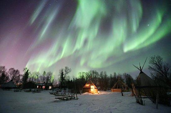 Chasse aux aurores boréales à Tromso