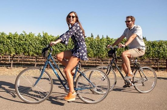 Independent Hassle-free Bike Rental...