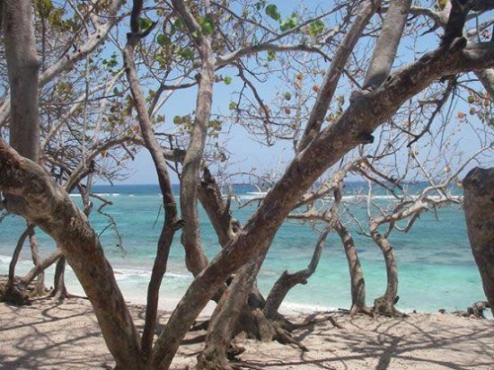 Luperon, República Dominicana: Walk to our local beach