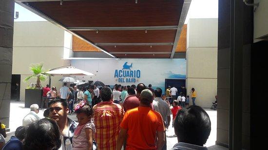 Leon, Mexico: 20170814_144448_large.jpg