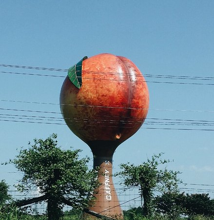 Gaffney, Güney Carolina: The Peachoid