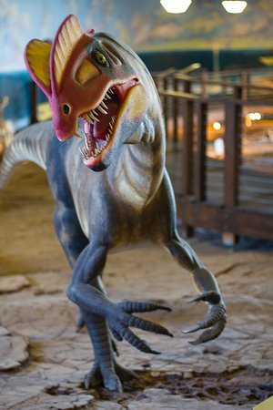 St. George Dinosaur Discovery Site at Johnson Farm : Welcome to my lair