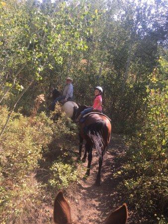 A-OK Corral / Horse Creek Ranch 사진