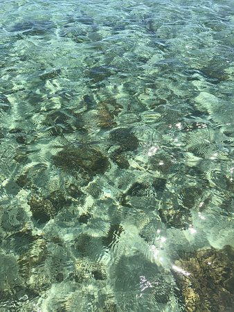 Fagamalo, Samoa: photo5.jpg