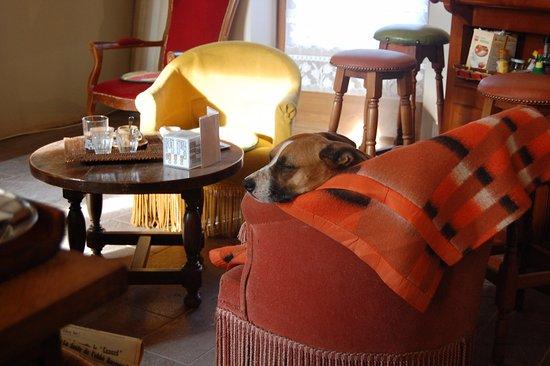 Epinac, Francja: Ma chienne a été très bien accueillie