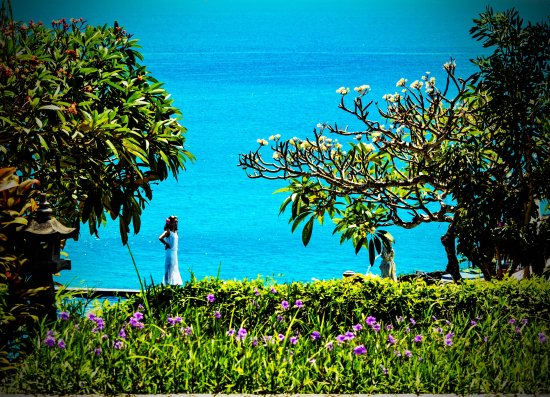 Blue Point Bay Villas & Spa: Beautiful grounds on the ocean side make Blue Point a popular wedding photography location.