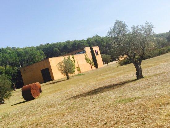 Fundacio l'Olivar: photo4.jpg
