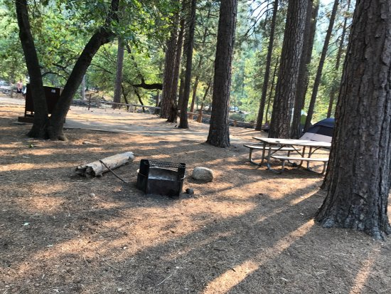 North Pines Campground: Nice and clean camp site, just on the bank of Merced river. Excellent experience!!!