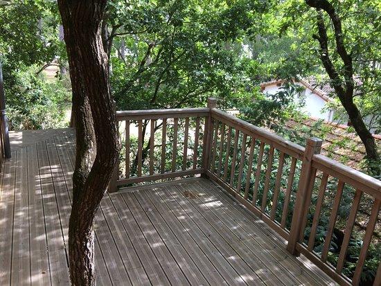 un paradis au bord du lac photo de la cabane au bord du lac biscarrosse tripadvisor. Black Bedroom Furniture Sets. Home Design Ideas