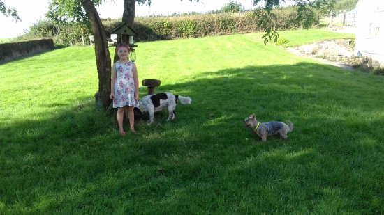 Musbury, UK: Kate's Farm Bed & Breakfast