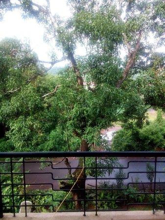 Mangeshi, อินเดีย: photo3.jpg