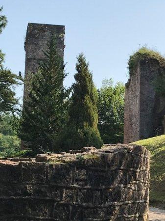 Arboretum et Parc du Chateau
