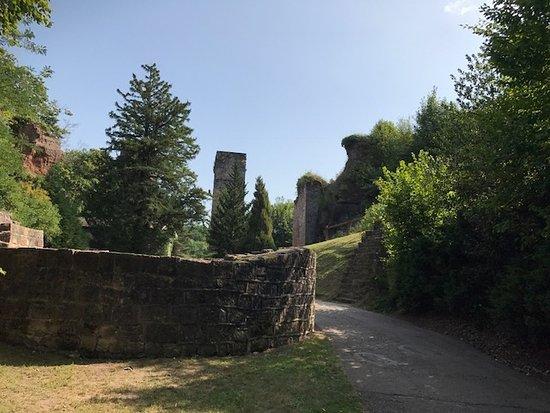 Arboretum et Parc du Château