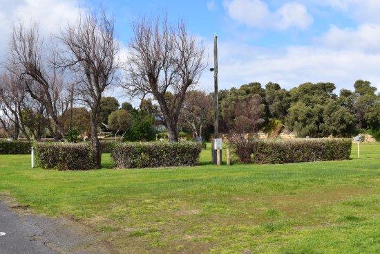 Surfside Holiday Park: grounds