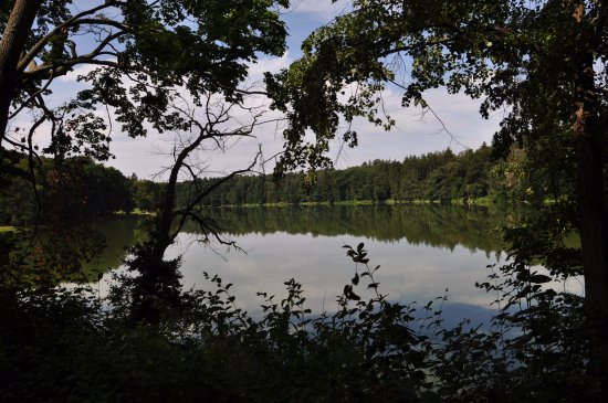 بوهيميا, جمهورية التشيك: Il laghetto attorno al Castello di Konopiste