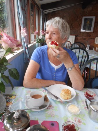 Canal Tea Rooms And Gardens