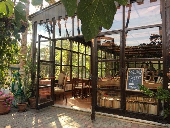 La villa hotel reviews price comparison pinarella - Bagno la villa pinarella ...